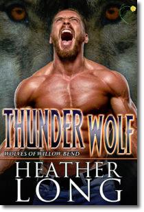Thunder Wolf (Wolves of Willow Bend#11)