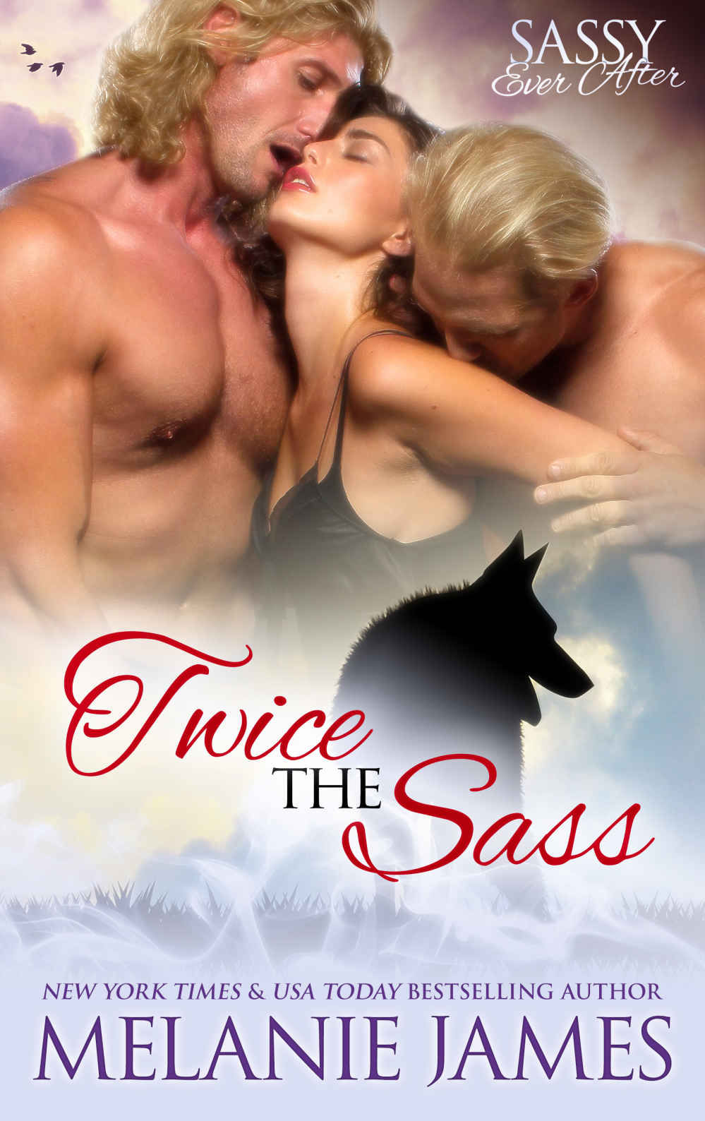 Twice the Sass: Sassy Ever After (Black Paw Wolves Book2)