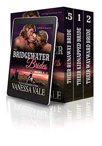 To Be Read – Bridgewater Series by Vanessa Vale