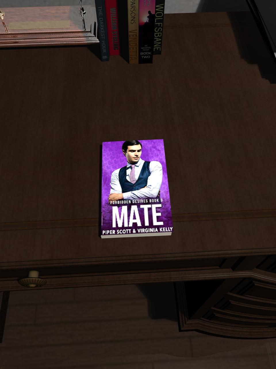 Mate (Forbidden Desires Book3)